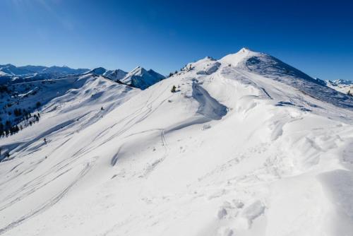 Skischaukel Dorfgastein_Grossarl (c) Dorfgasteiner Bergbahnen AG (12)